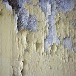 טיח מתקלף קיר רטוב